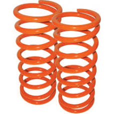 "1"" LOWERING SPRINGS REAR"