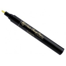 TOUCH UP PAINT PEN - BELUGA BLACK