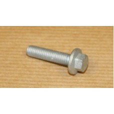 SCREW FLAMGED HEAD M6 X 25