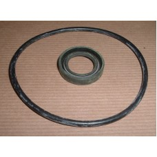 PAS PUMP SEAL KIT